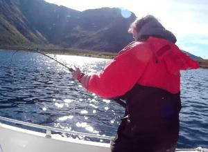 Vannöyan pallas väsyttelee kalastajaa