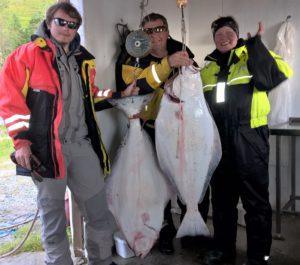 Pallaksen kalastus voi olla juhlaa Vannöyalla