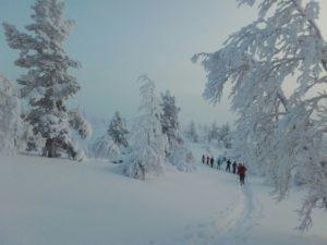 Talvella vaellus vies keskelle hiljaisuutta, shhh..