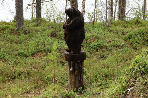 Karhu pihalla