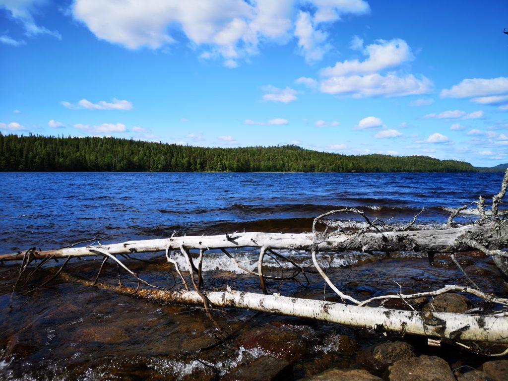 Lake Koutus in wilderness
