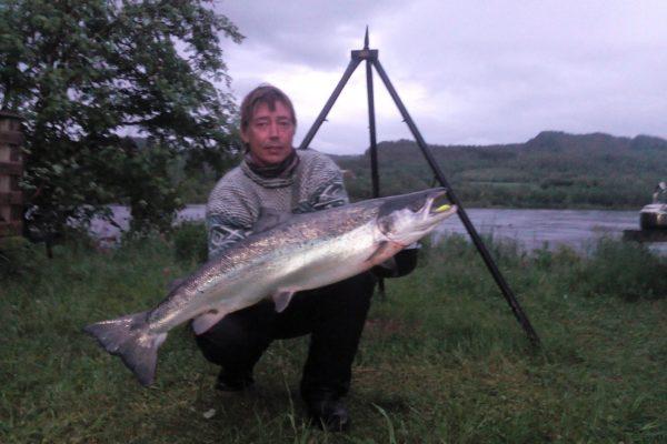 Salmon from Namsen